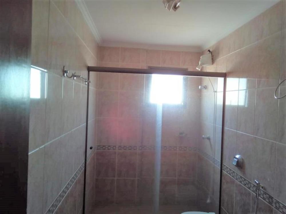 Comprar Apartamento / Padrão em São José do Rio Preto apenas R$ 440.000,00 - Foto 19
