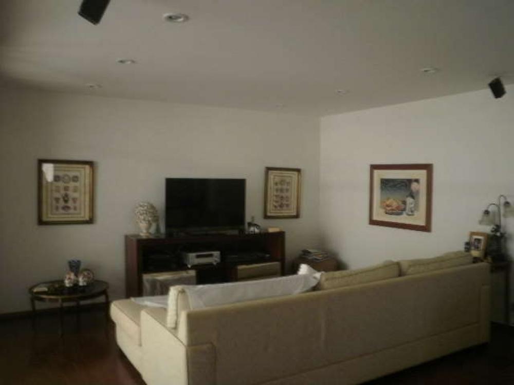 SAO JOSE DO RIO PRETO Casa Locacao R$ 7.000,00 8 Dormitorios 1 Suite Area do terreno 725.00m2 Area construida 560.00m2