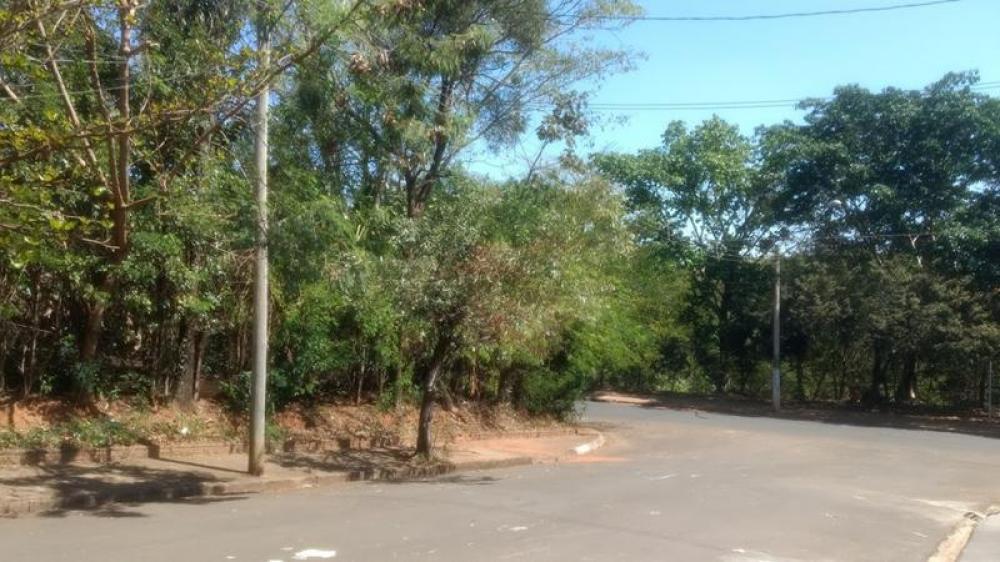 Comprar Terreno / Área em Olimpia R$ 860.000,00 - Foto 2