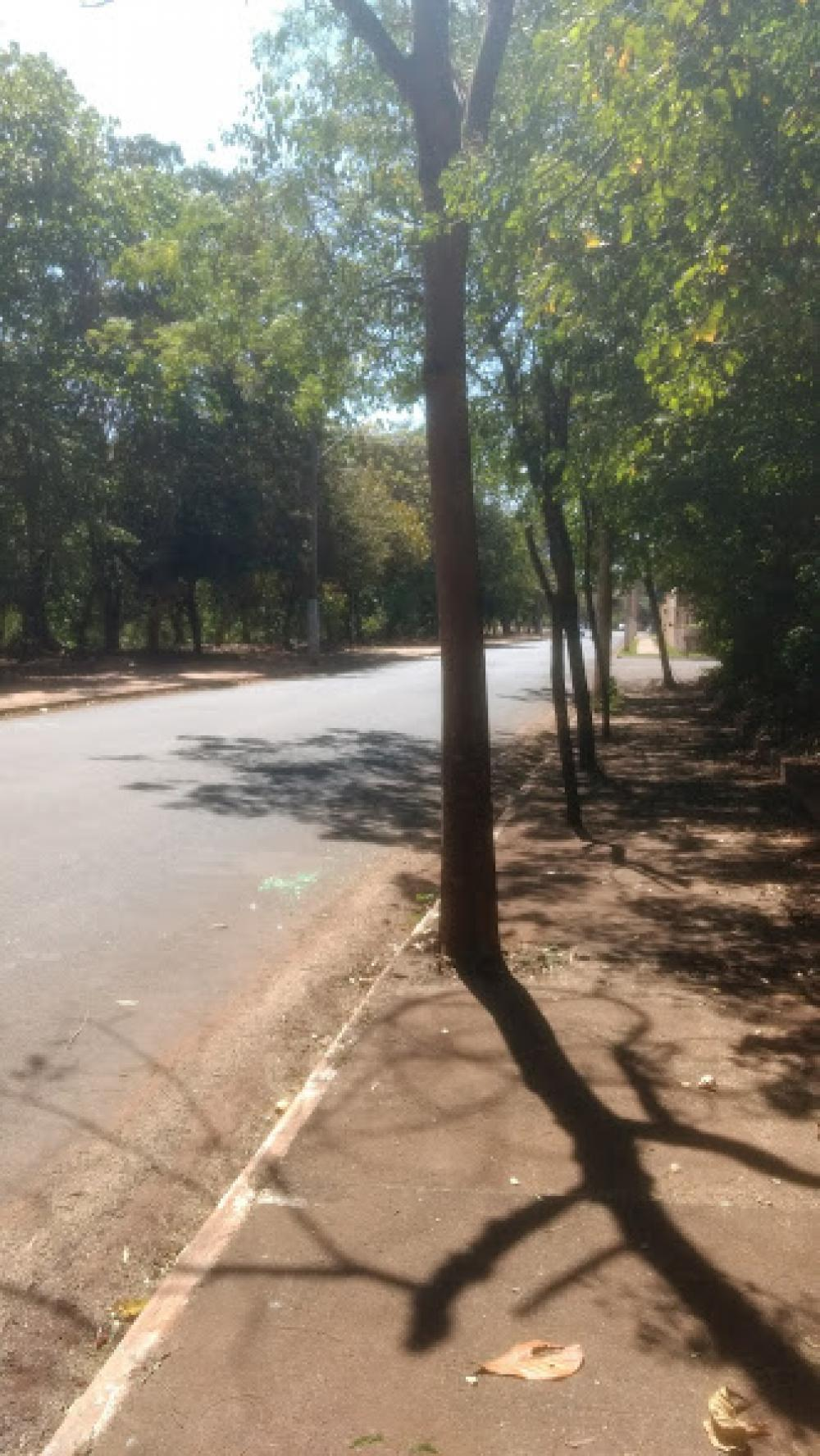 Comprar Terreno / Área em Olimpia R$ 860.000,00 - Foto 13