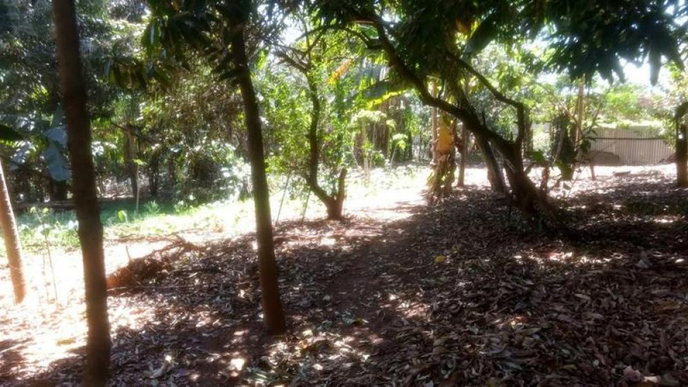 Comprar Terreno / Área em Olimpia R$ 860.000,00 - Foto 21