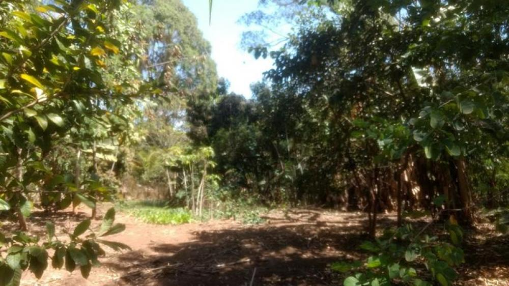 Comprar Terreno / Área em Olimpia R$ 860.000,00 - Foto 1