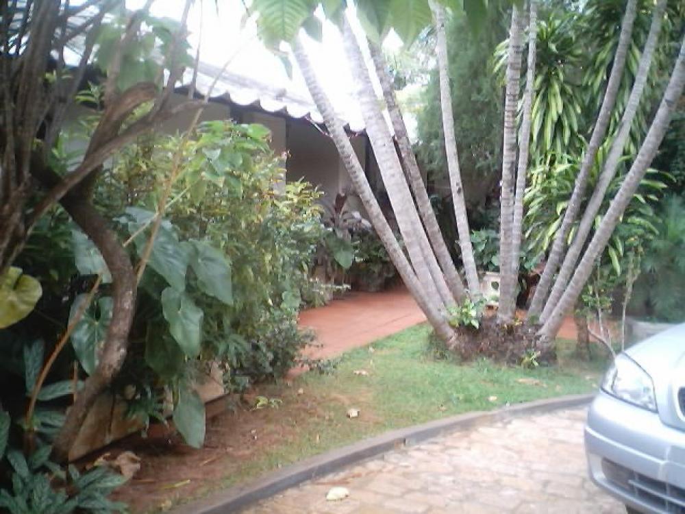 Comprar Casa / Padrão em São José do Rio Preto R$ 850.000,00 - Foto 14