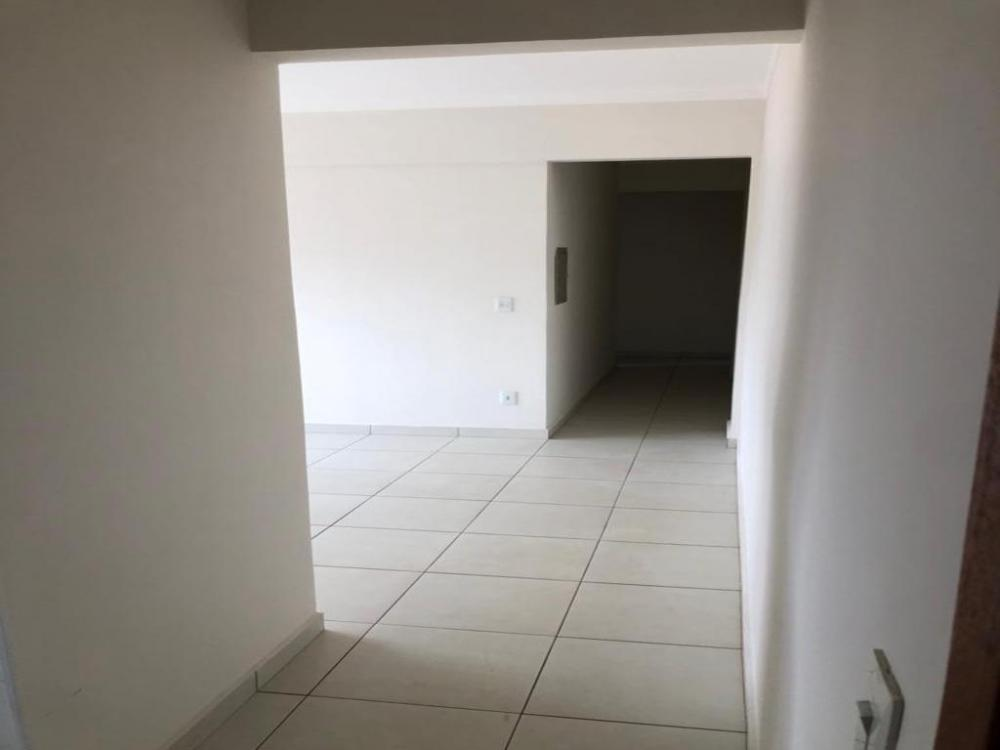 Alugar Apartamento / Padrão em SAO JOSE DO RIO PRETO apenas R$ 900,00 - Foto 2