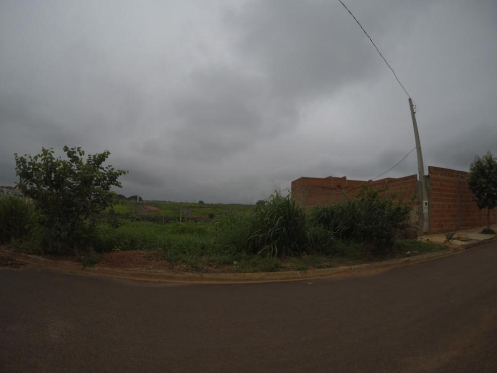 Comprar Terreno / Padrão em Bady Bassitt apenas R$ 60.000,00 - Foto 7