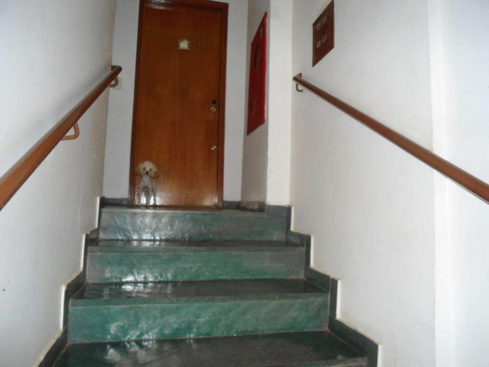 Comprar Apartamento / Padrão em São José do Rio Preto R$ 250.000,00 - Foto 13
