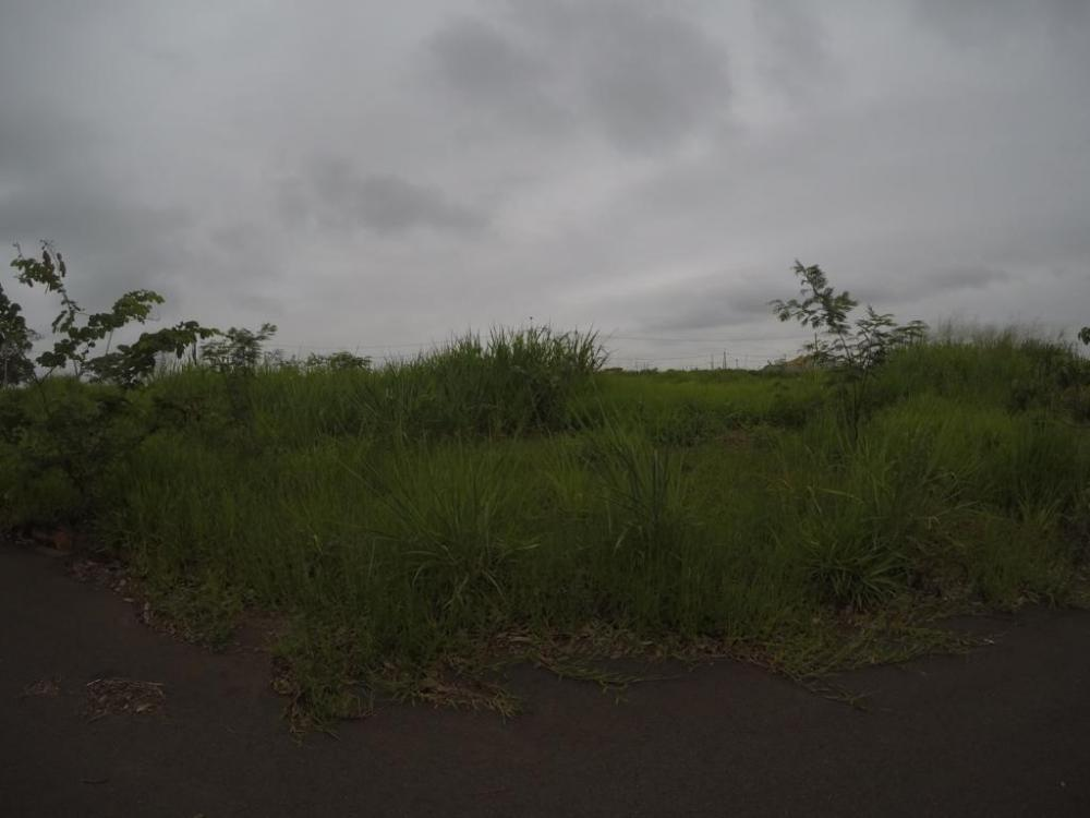 Comprar Terreno / Padrão em Bady Bassitt apenas R$ 98.000,00 - Foto 1
