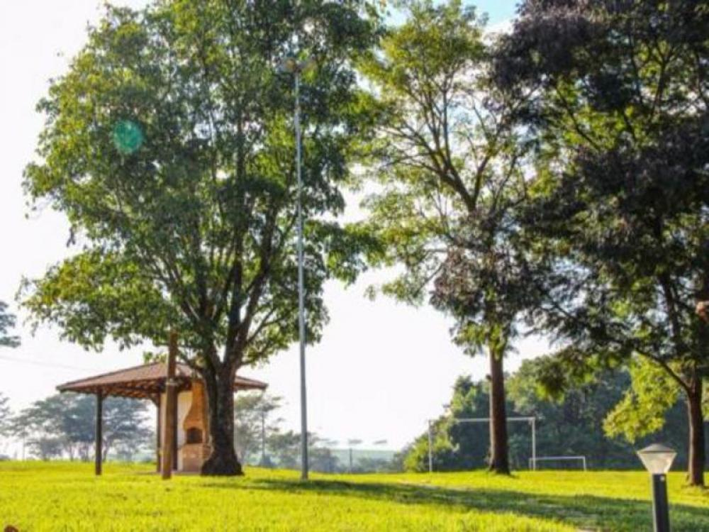 Comprar Terreno / Condomínio em São José do Rio Preto apenas R$ 420.000,00 - Foto 4