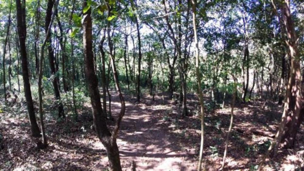 Comprar Terreno / Condomínio em São José do Rio Preto apenas R$ 414.000,00 - Foto 26