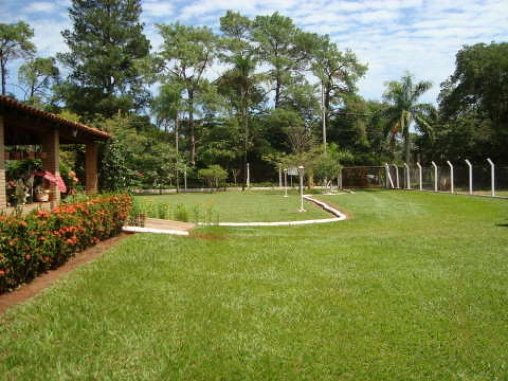 Comprar Rural / Chácara em São José do Rio Preto R$ 800.000,00 - Foto 1