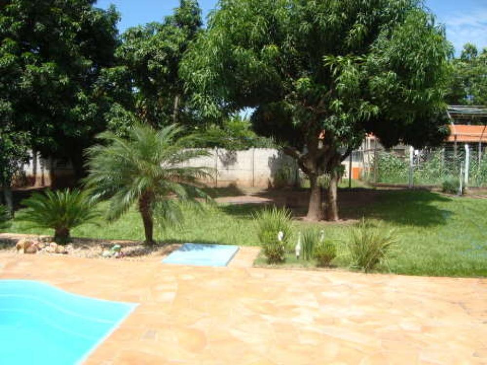 Comprar Rural / Chácara em São José do Rio Preto R$ 800.000,00 - Foto 5