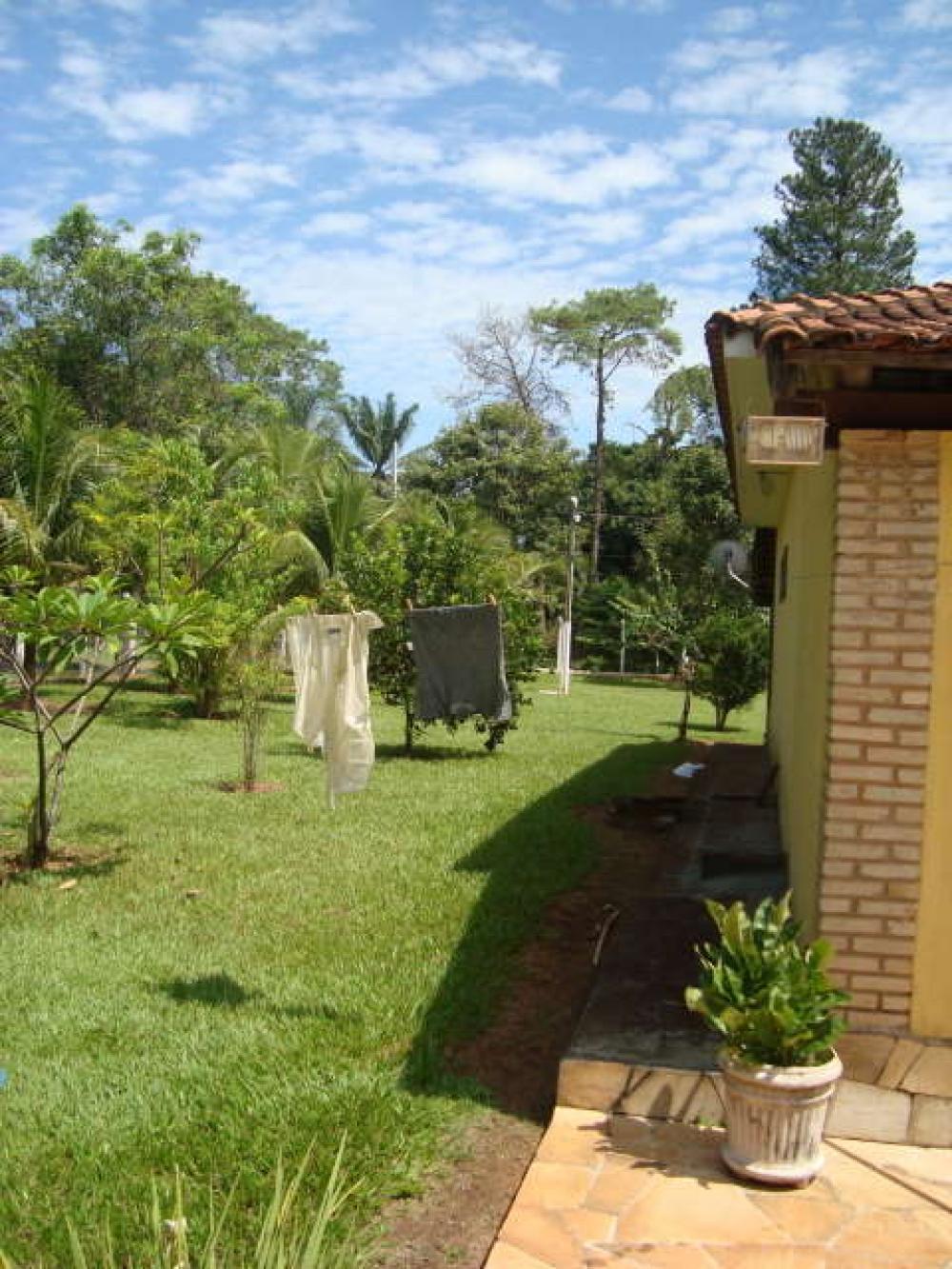 Comprar Rural / Chácara em São José do Rio Preto R$ 800.000,00 - Foto 6