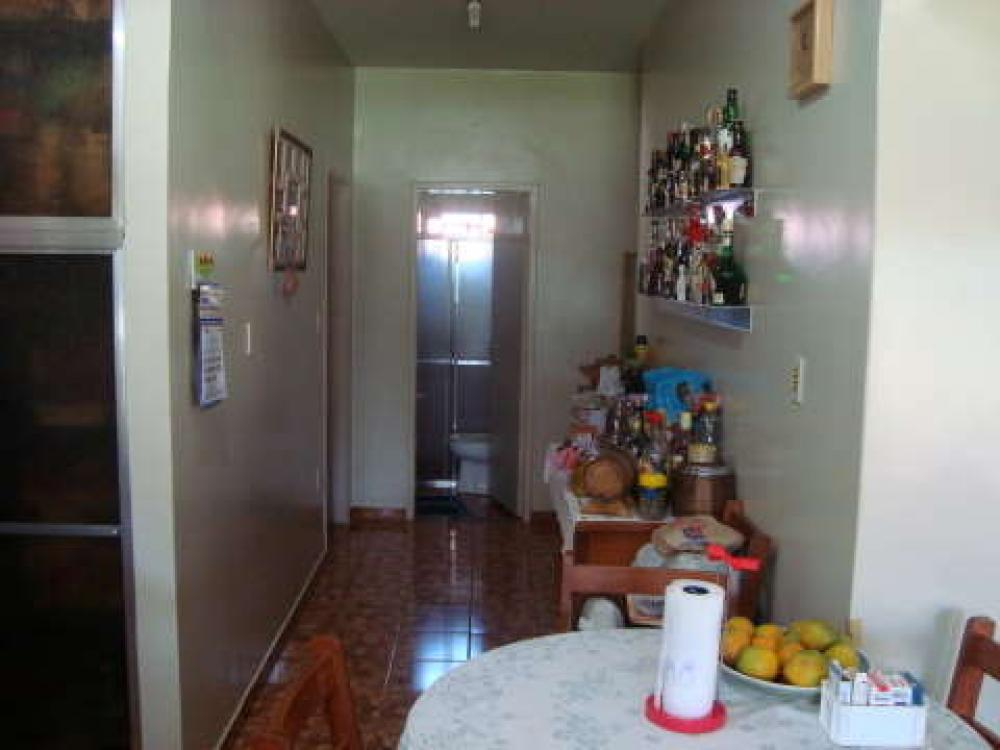 Comprar Rural / Chácara em São José do Rio Preto R$ 800.000,00 - Foto 12