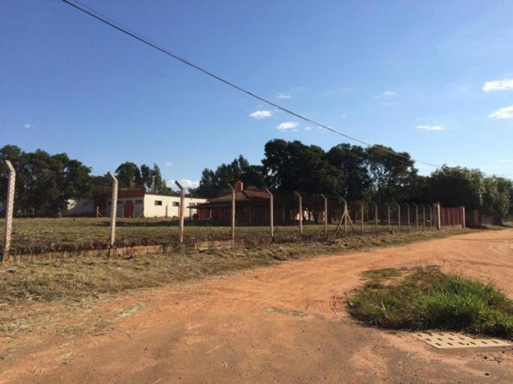 Comprar Terreno / Área em Mirassol apenas R$ 4.500.000,00 - Foto 1