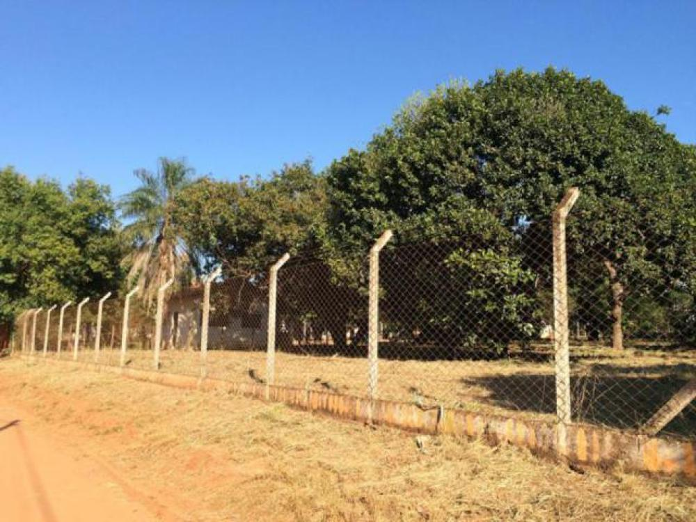 Comprar Terreno / Área em Mirassol apenas R$ 4.500.000,00 - Foto 3