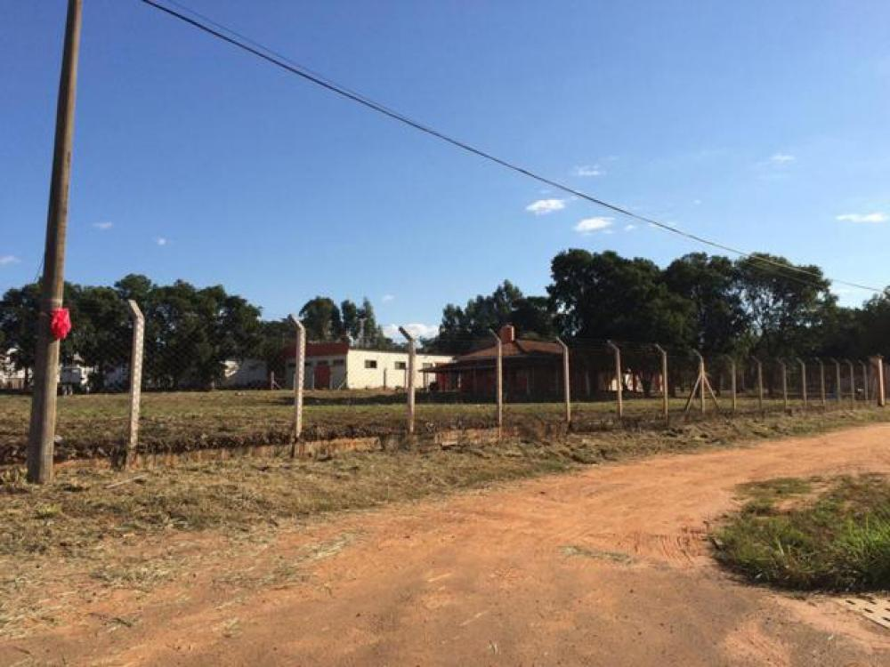 Comprar Terreno / Área em Mirassol apenas R$ 4.500.000,00 - Foto 6