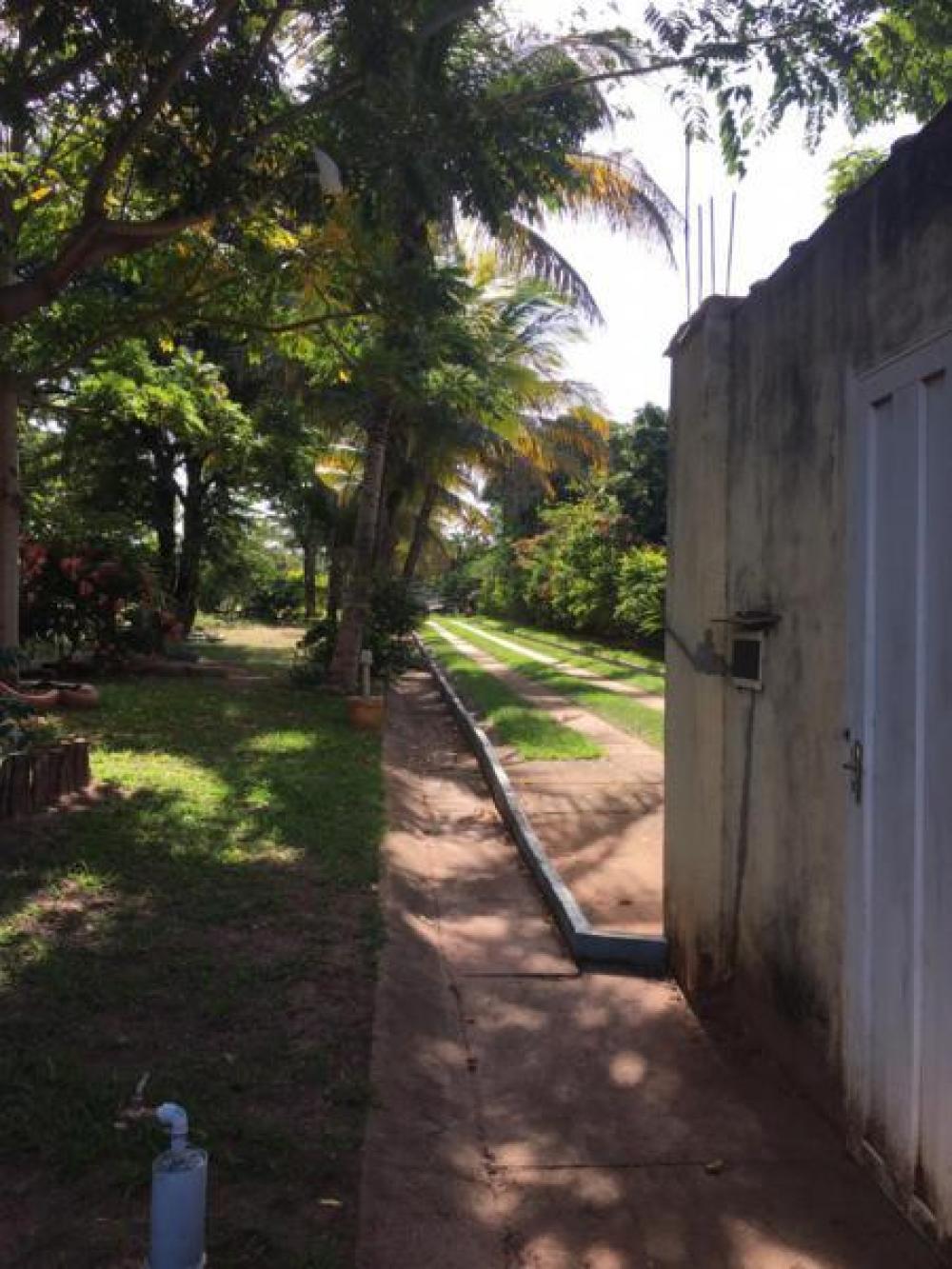 Comprar Rural / Chácara em São José do Rio Preto R$ 600.000,00 - Foto 15
