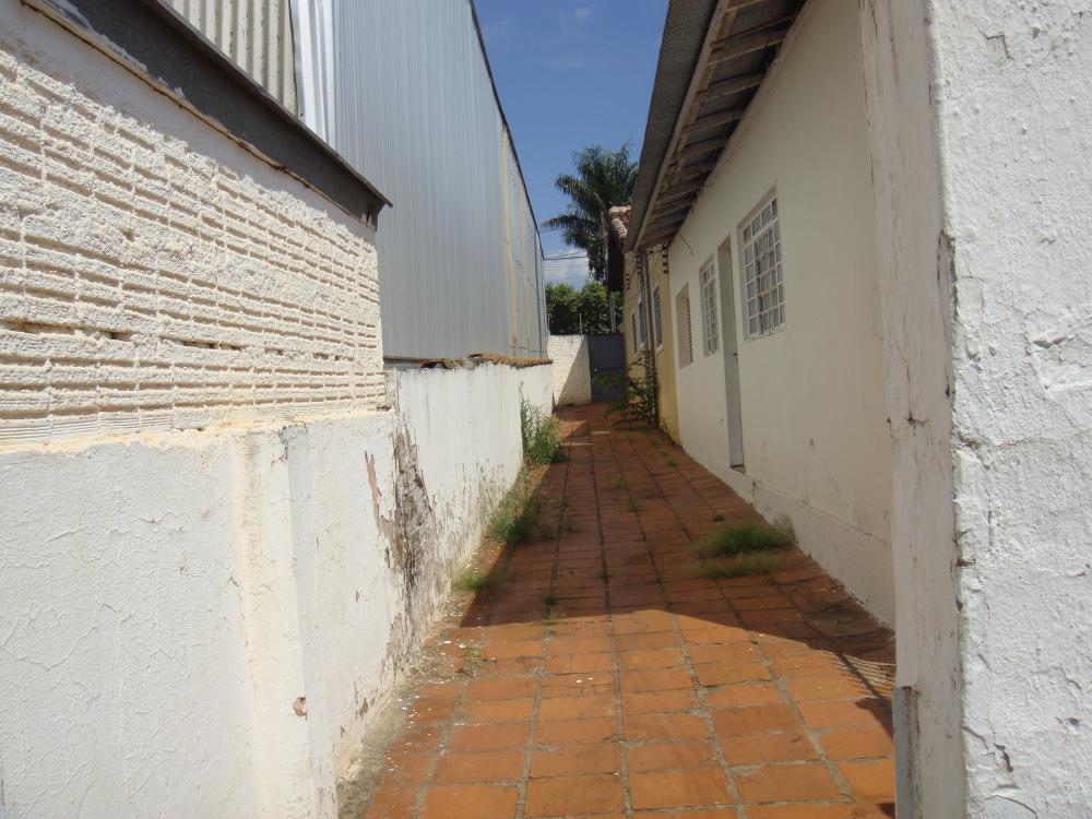Alugar Casa / Padrão em São José do Rio Preto R$ 500,00 - Foto 14