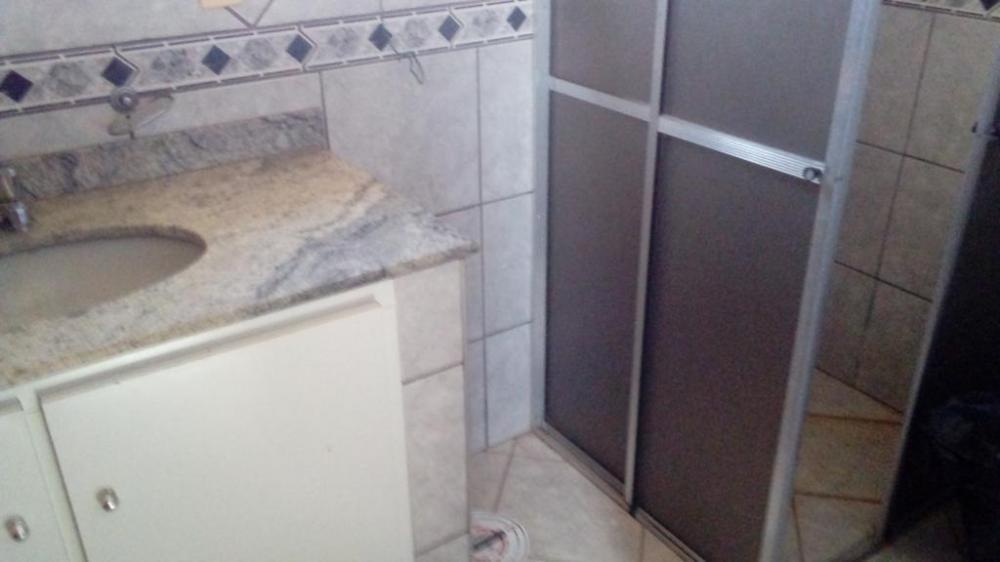 Alugar Apartamento / Padrão em São José do Rio Preto R$ 1.200,00 - Foto 19