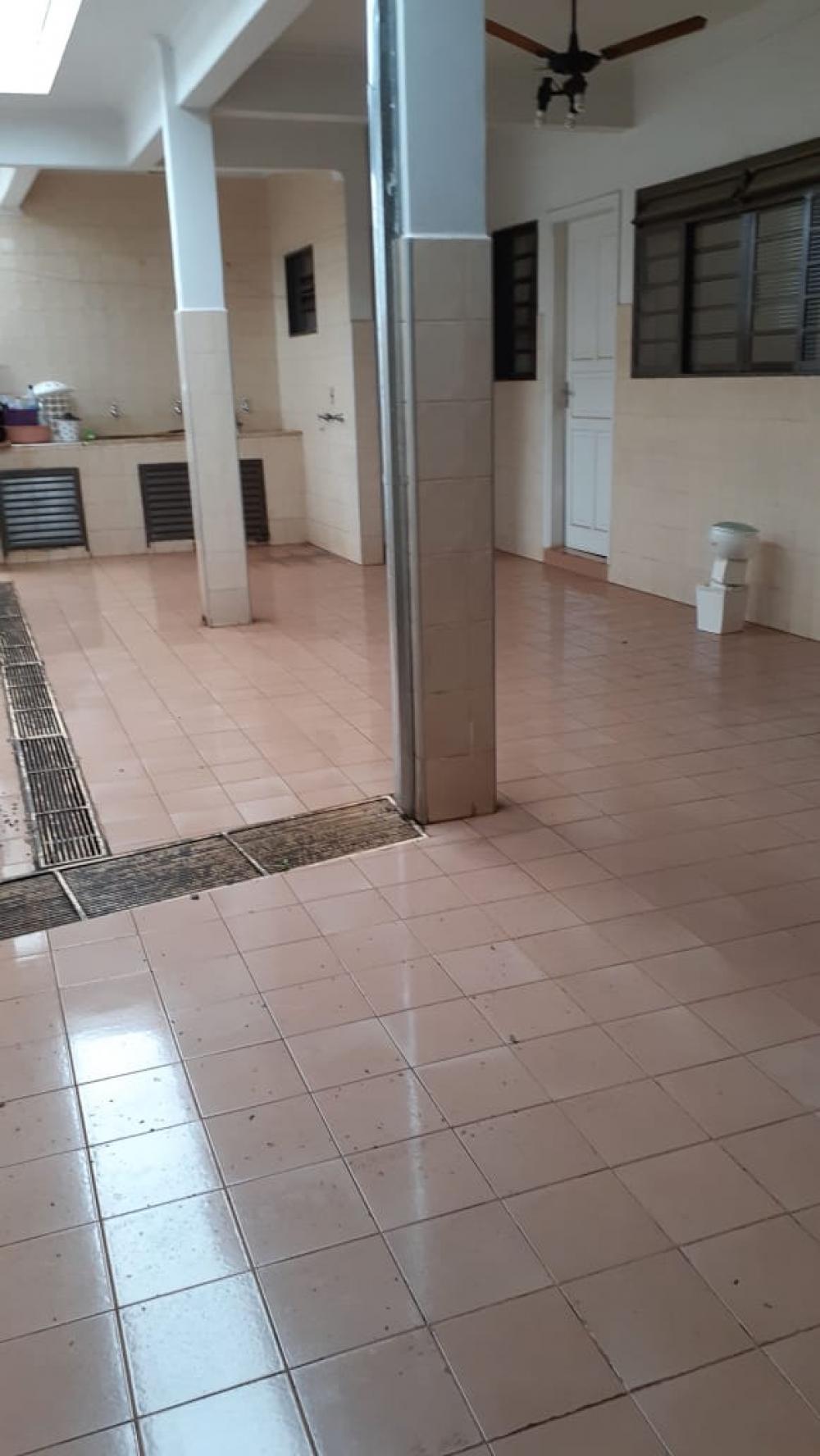 Sao Jose do Rio Preto Casa Venda R$800.000,00 3 Dormitorios 3 Vagas Area do terreno 180.00m2 Area construida 180.00m2