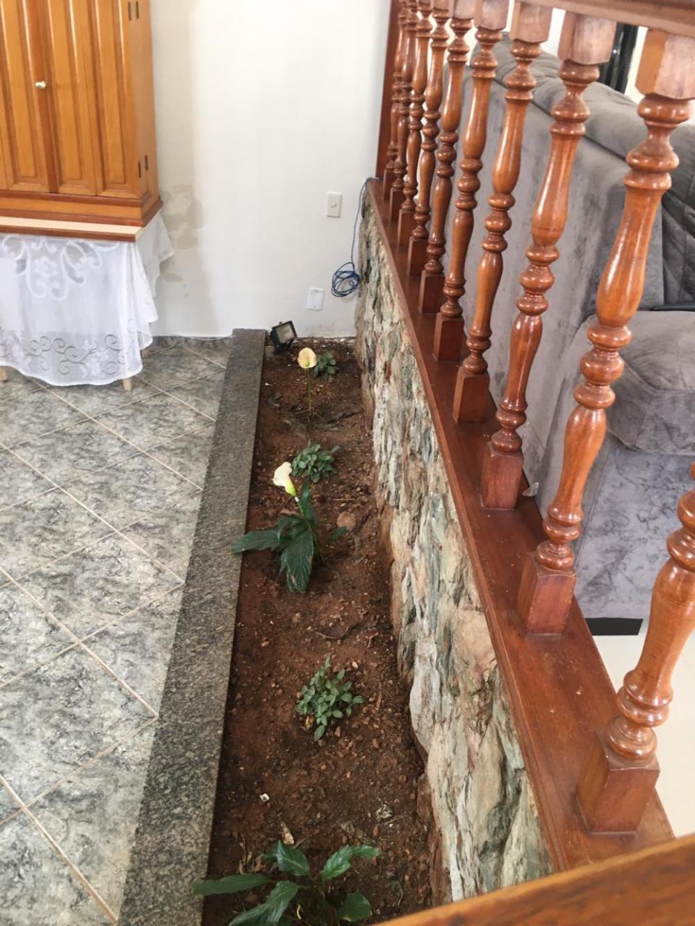 Comprar Casa / Padrão em São José do Rio Preto R$ 780.000,00 - Foto 7