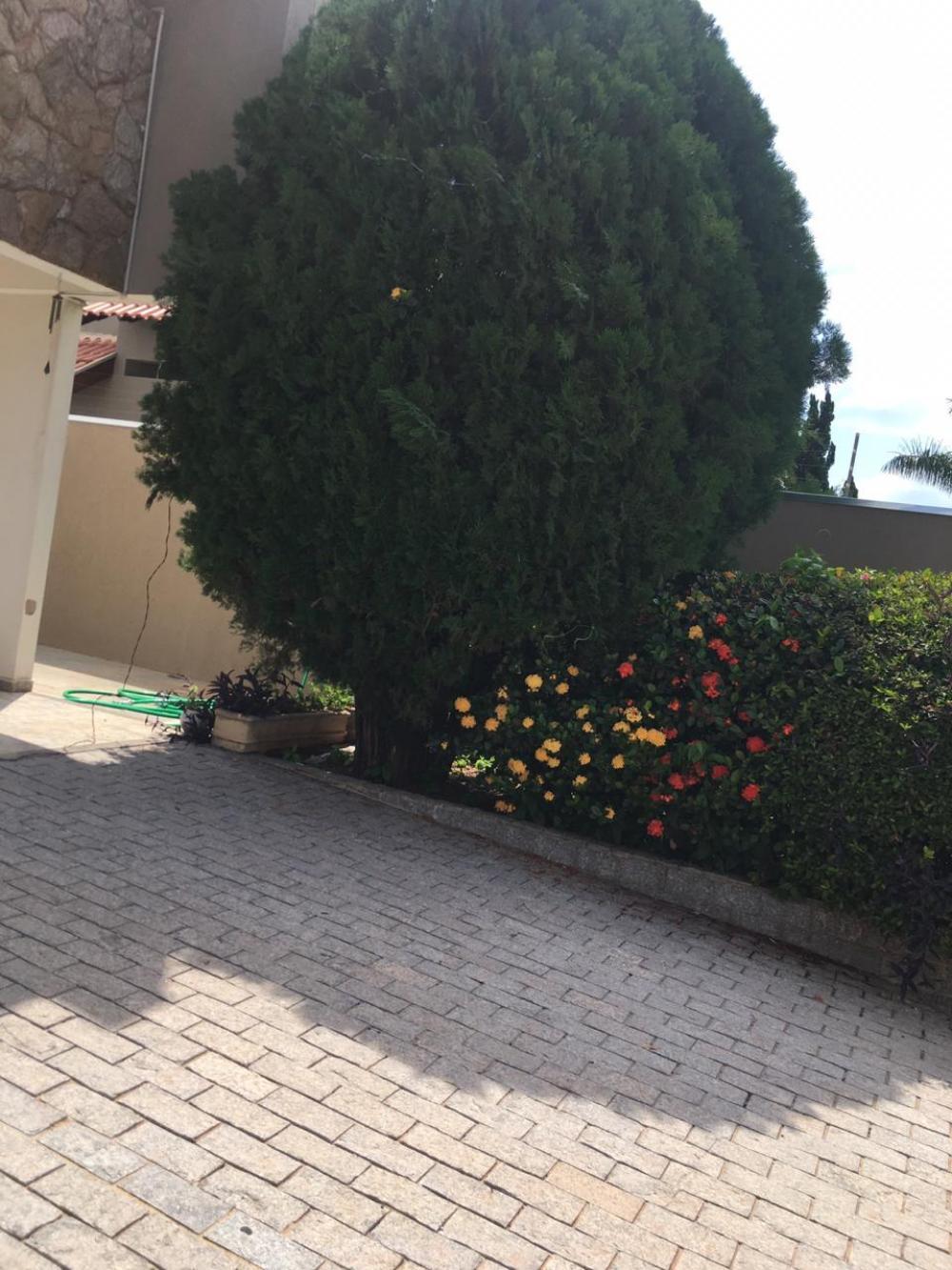 Comprar Casa / Padrão em São José do Rio Preto R$ 780.000,00 - Foto 20
