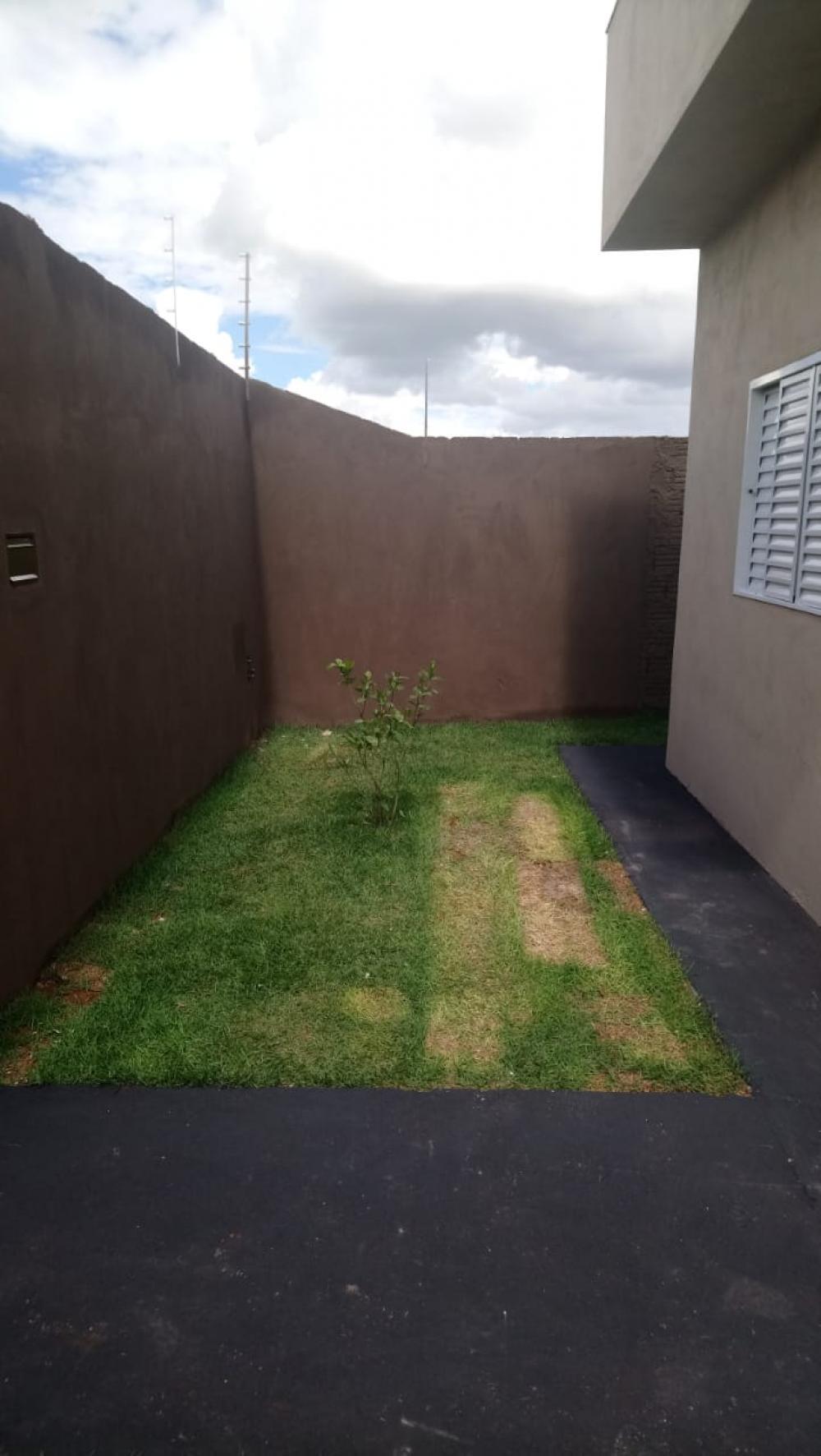 Alugar Casa / Padrão em São José do Rio Preto R$ 600,00 - Foto 3