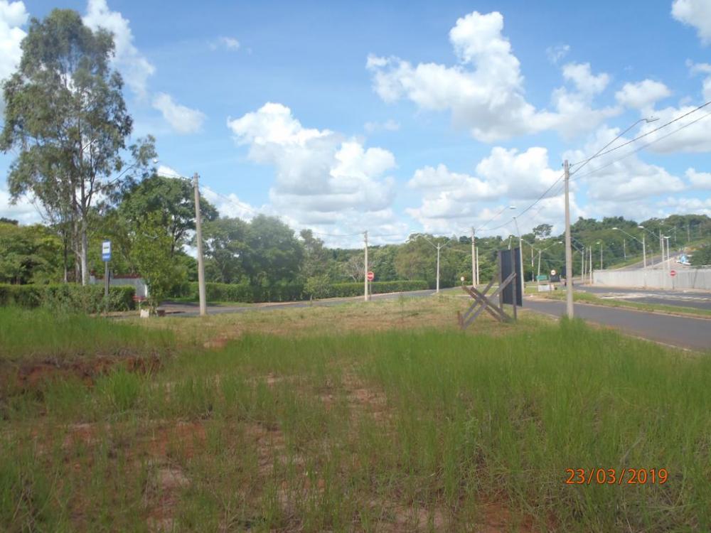 Alugar Terreno / Área em São José do Rio Preto R$ 2.000,00 - Foto 4