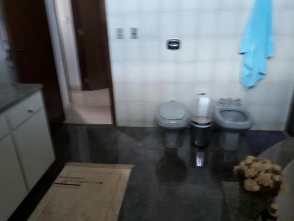 Alugar Casa / Padrão em São José do Rio Preto R$ 6.500,00 - Foto 2
