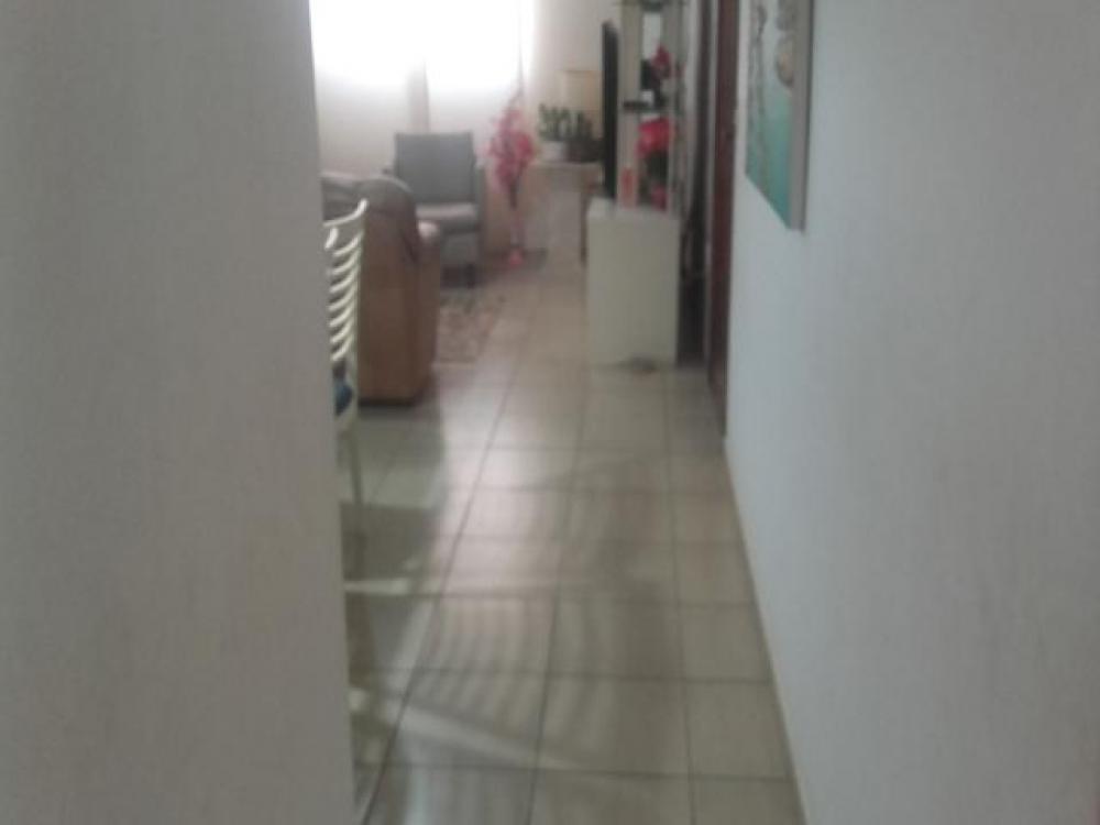 Comprar Casa / Padrão em São José do Rio Preto R$ 350.000,00 - Foto 5
