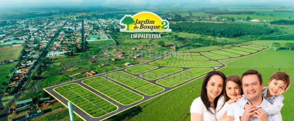 Comprar Terreno / Padrão em Palestina apenas R$ 51.250,00 - Foto 1