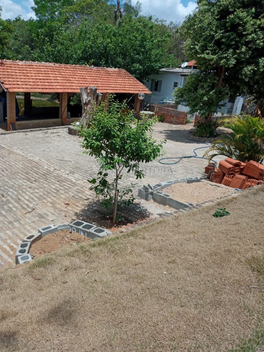 Comprar Rural / Chácara em São José do Rio Preto R$ 650.000,00 - Foto 31