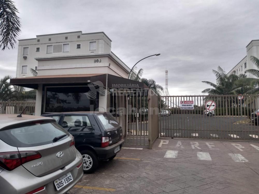 Alugar Apartamento / Padrão em São José do Rio Preto apenas R$ 795,00 - Foto 3