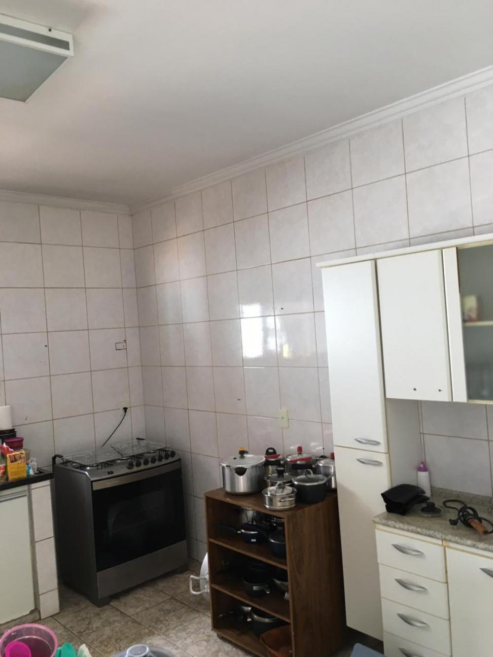 Alugar Casa / Padrão em São José do Rio Preto R$ 4.000,00 - Foto 9