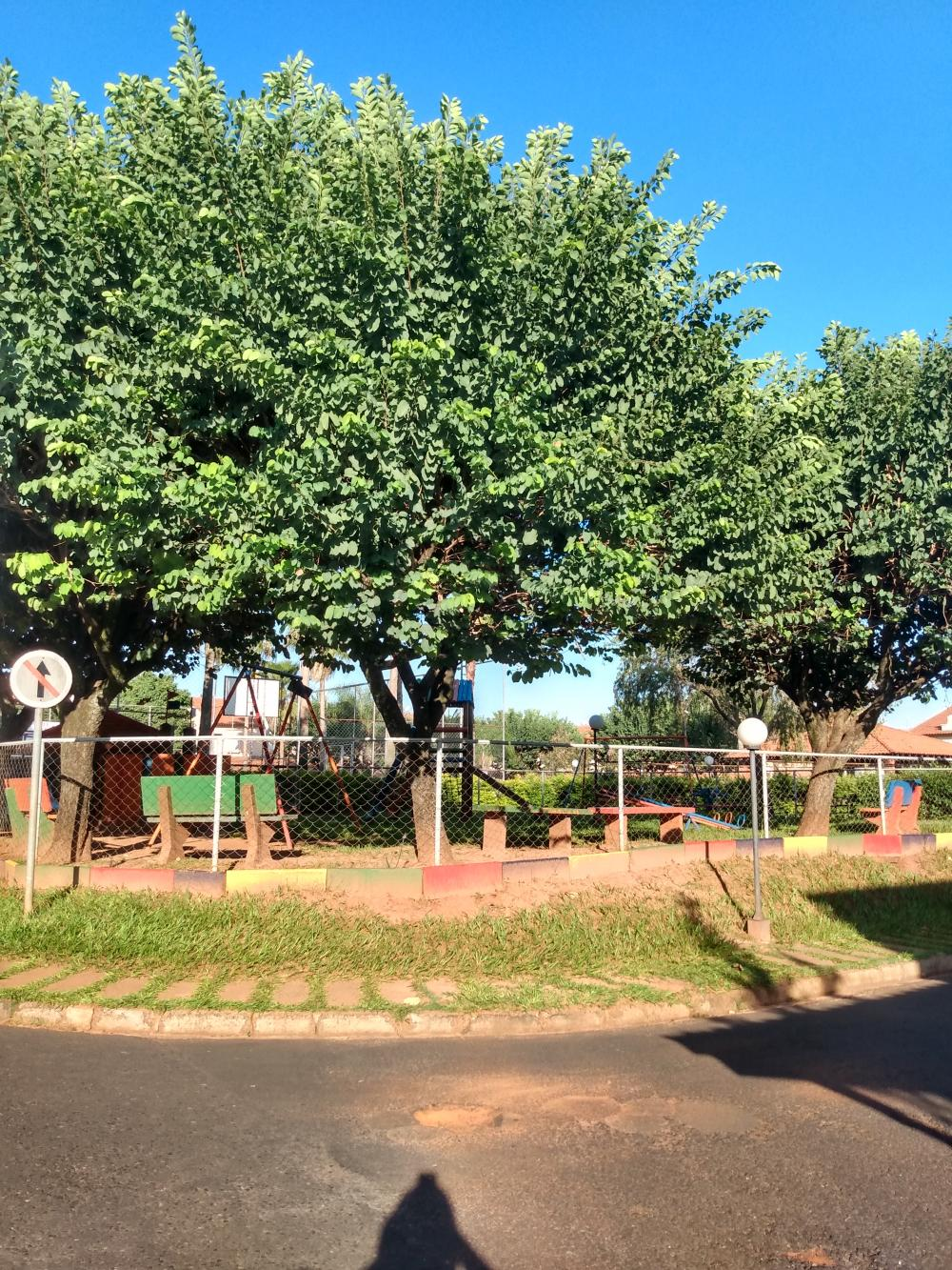 Comprar Casa / Condomínio em SAO JOSE DO RIO PRETO apenas R$ 220.000,00 - Foto 23