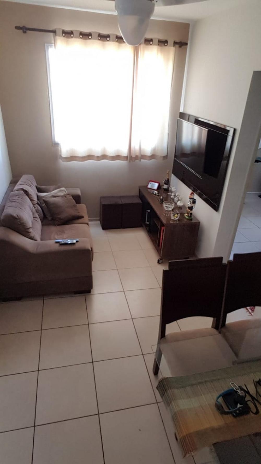 Comprar Apartamento / Padrão em SAO JOSE DO RIO PRETO apenas R$ 180.000,00 - Foto 1