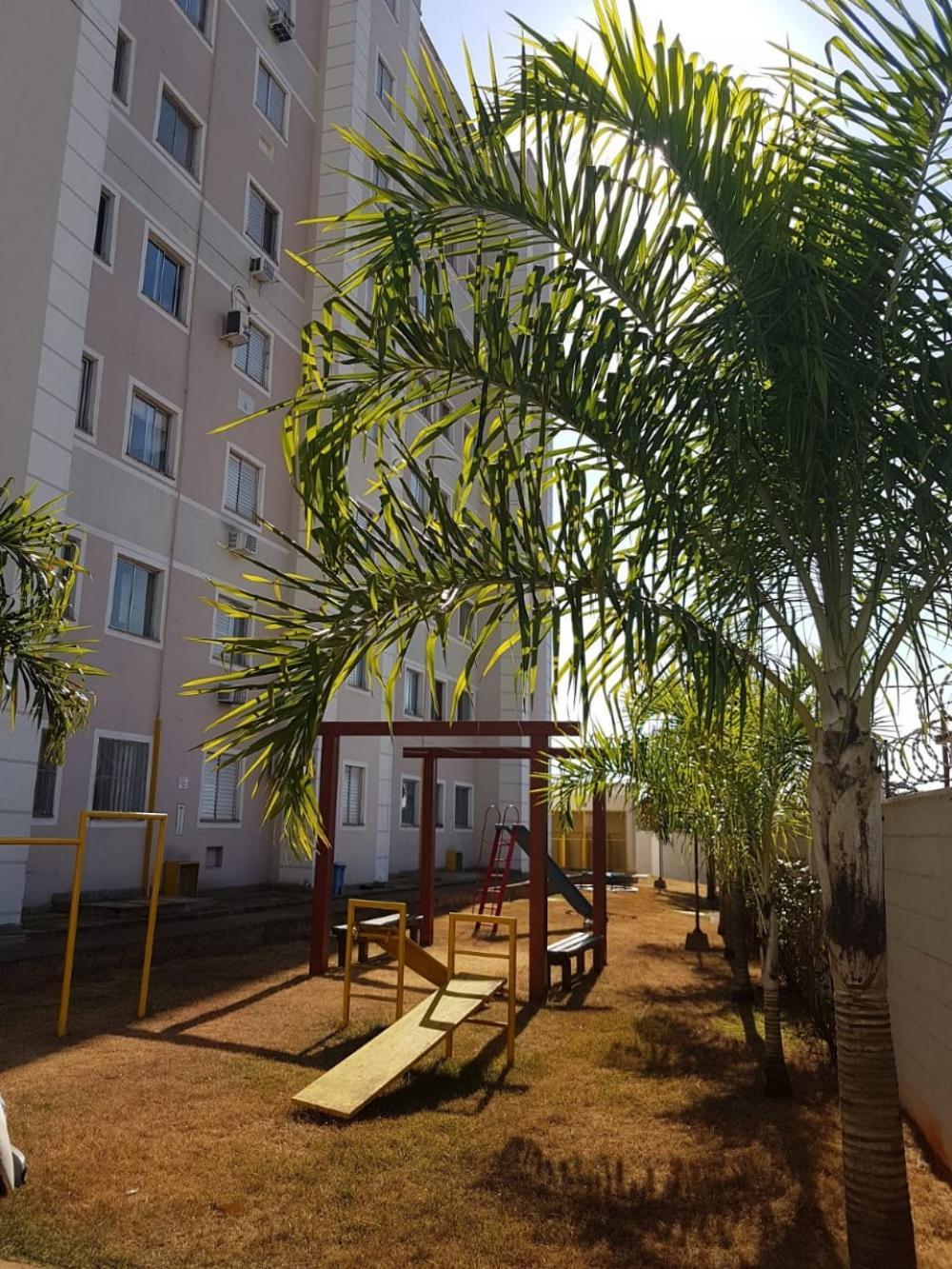 Comprar Apartamento / Padrão em SAO JOSE DO RIO PRETO apenas R$ 180.000,00 - Foto 2