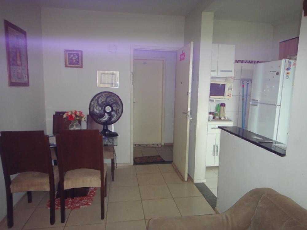 Comprar Apartamento / Padrão em SAO JOSE DO RIO PRETO apenas R$ 180.000,00 - Foto 15