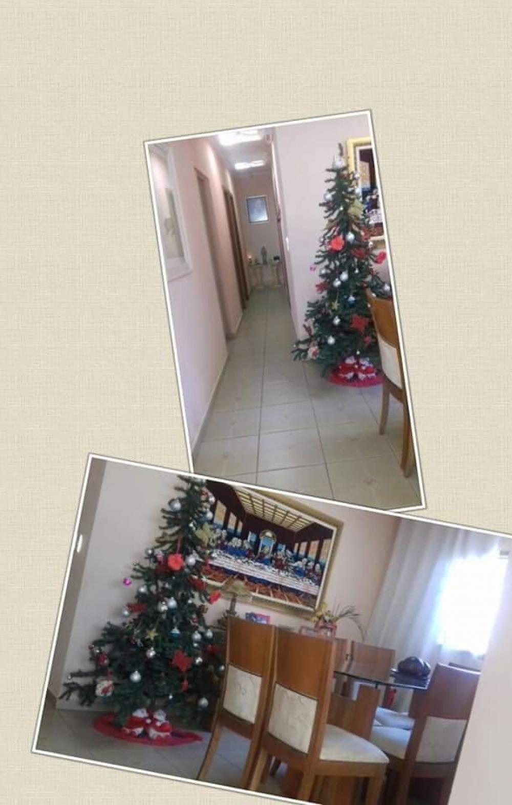 Comprar Casa / Padrão em São José do Rio Preto R$ 550.000,00 - Foto 12