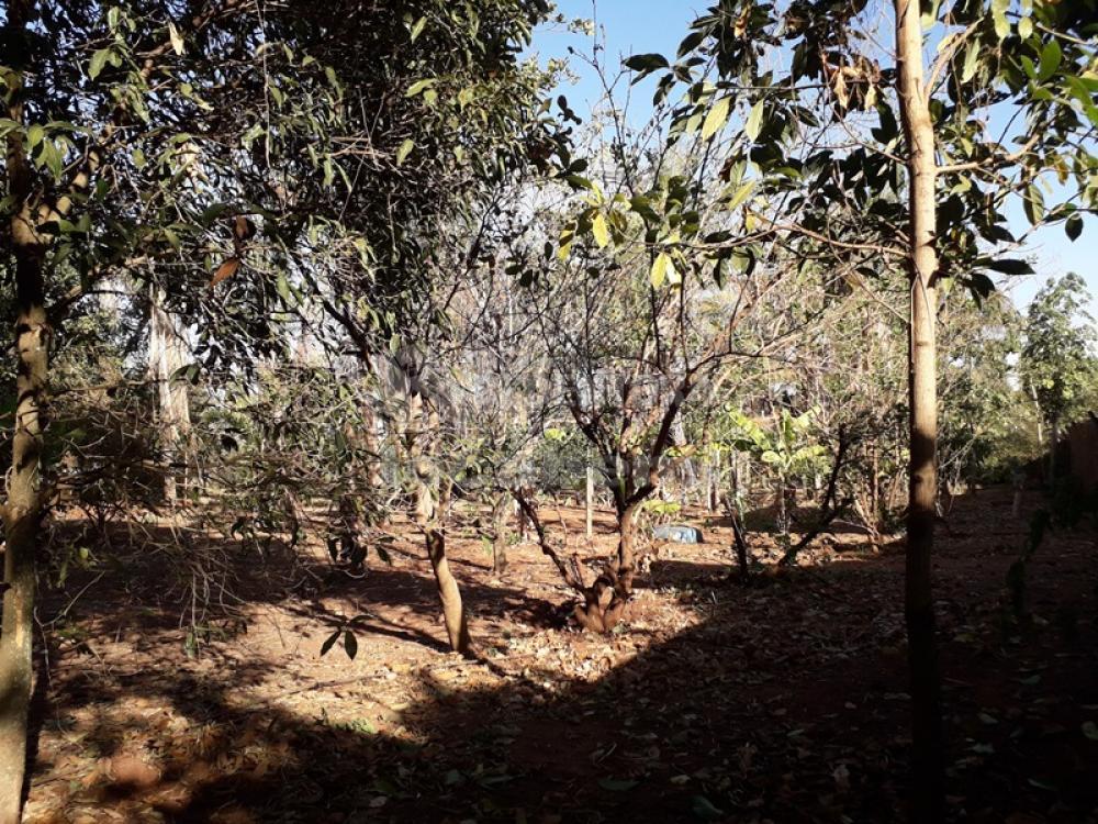 Comprar Rural / Chácara em São José do Rio Preto R$ 620.000,00 - Foto 18