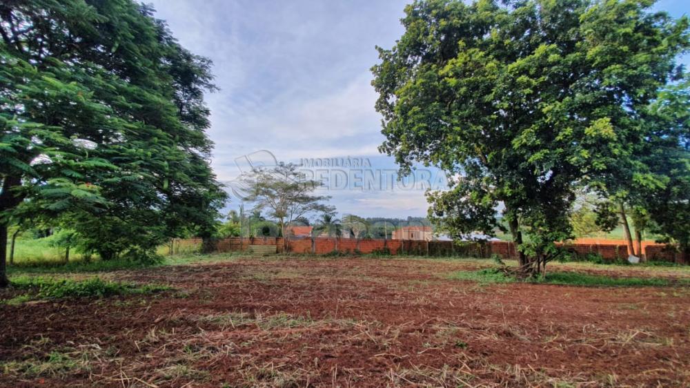 Comprar Rural / Chácara em Cedral R$ 150.000,00 - Foto 2
