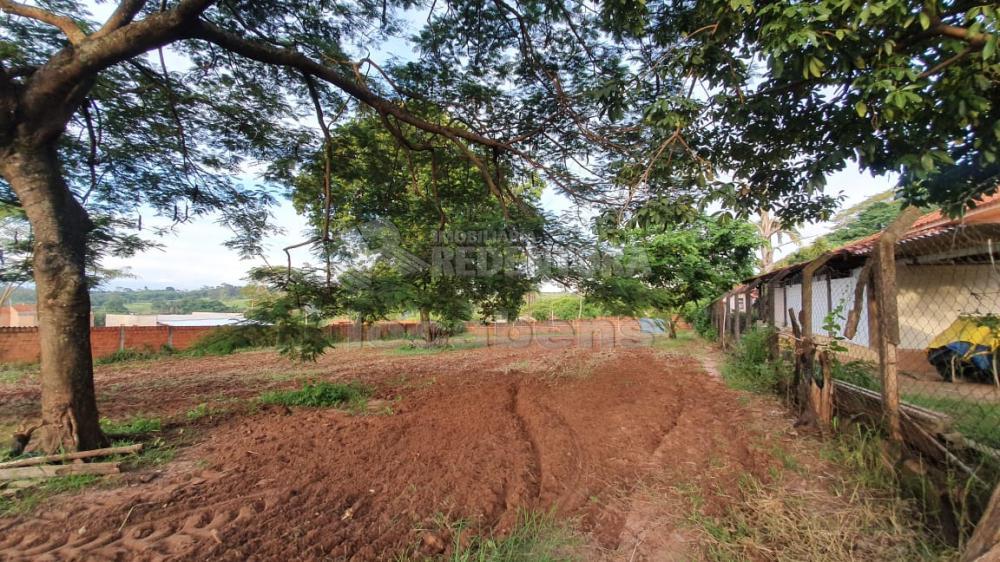 Comprar Rural / Chácara em Cedral R$ 150.000,00 - Foto 3