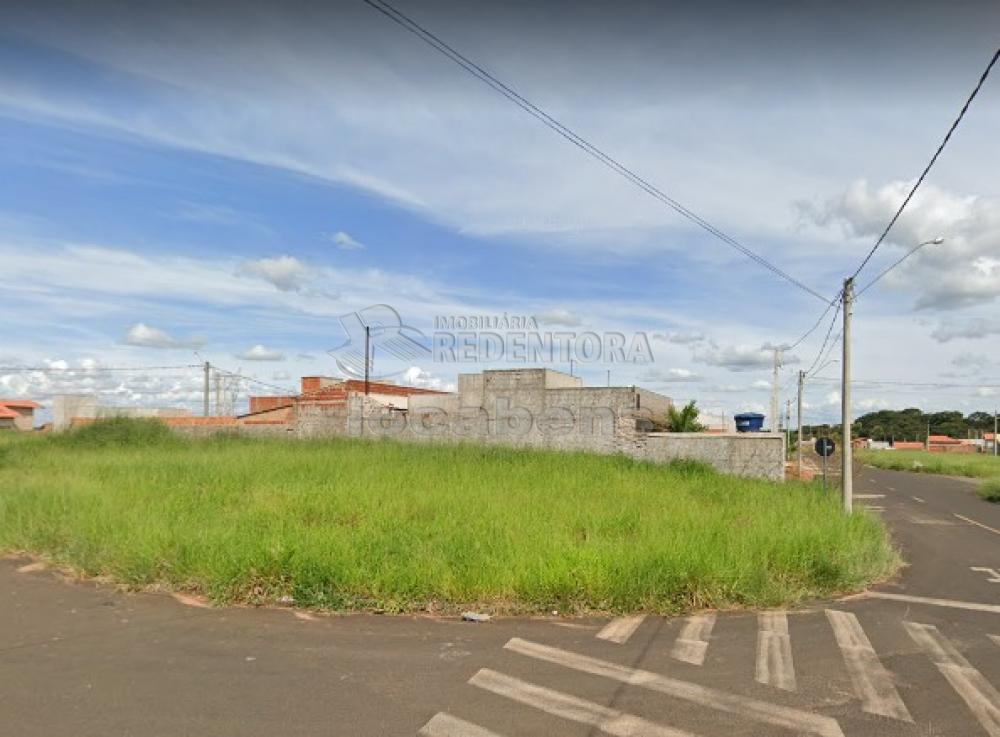 Comprar Terreno / Padrão em São José do Rio Preto R$ 59.675,00 - Foto 1