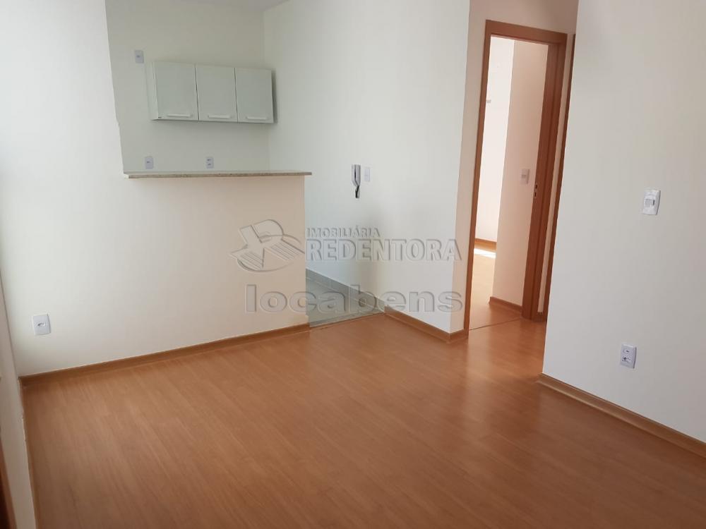 Alugar Apartamento / Padrão em São José do Rio Preto R$ 600,00 - Foto 1