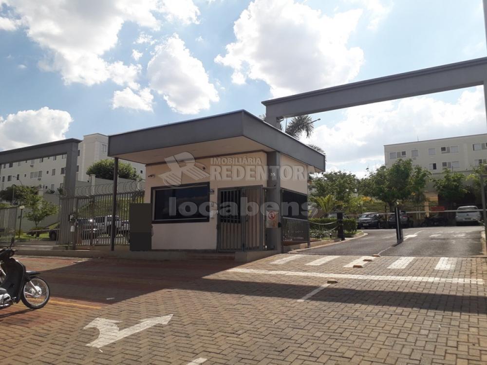 Alugar Apartamento / Padrão em São José do Rio Preto R$ 850,00 - Foto 1