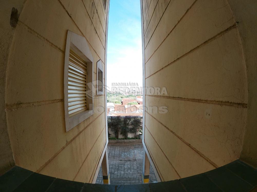 Alugar Apartamento / Padrão em São José do Rio Preto apenas R$ 450,00 - Foto 4