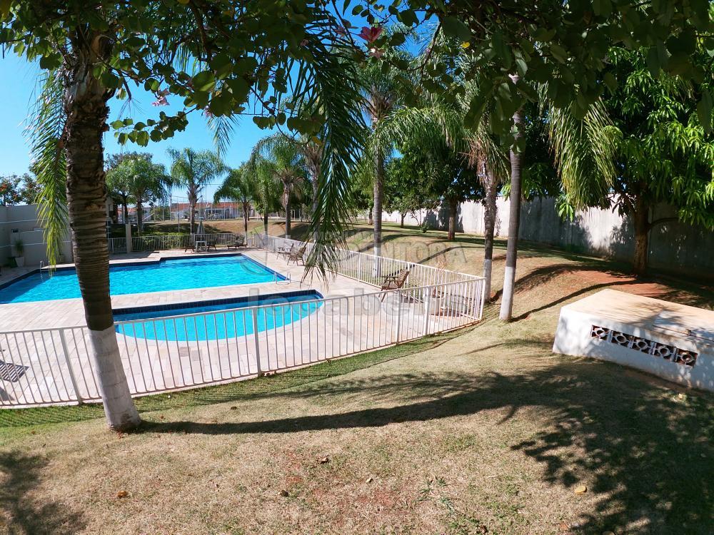 Alugar Casa / Condomínio em São José do Rio Preto R$ 1.100,00 - Foto 37