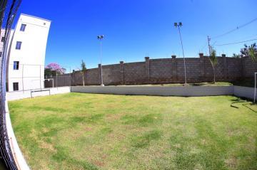 Comprar Apartamento / Padrão em São José do Rio Preto apenas R$ 137.000,00 - Foto 33