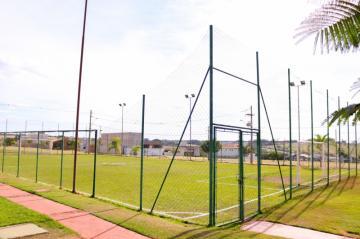 Comprar Terreno / Condomínio em Mirassol apenas R$ 120.000,00 - Foto 27