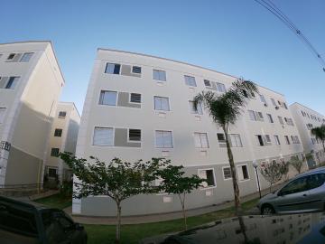 Alugar Apartamento / Padrão em São José do Rio Preto R$ 850,00 - Foto 15
